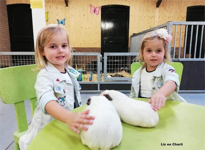 Dierendag bij kinderboerderij 't Erf Waalwijk